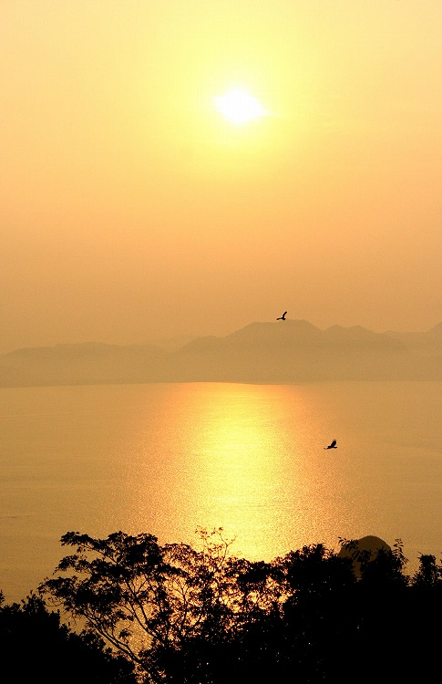 能古島アイランドパーク 8